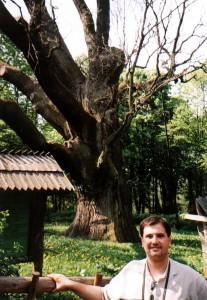 Dąb Bartek w Bartkowie
