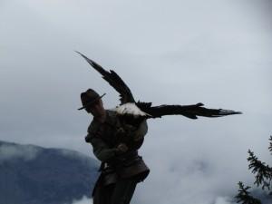 Pokaz tresury ptaków drapieżnych na zamku Hohenwerfen w Austrii