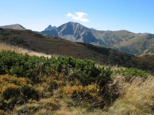 Zejście z Trzydniowiańskiego Wierchu do Doliny Chochołowskiej