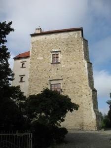 Zamek w Wojciechowie