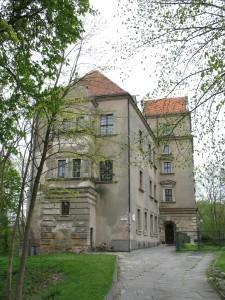 Stary Zamek w Płotach