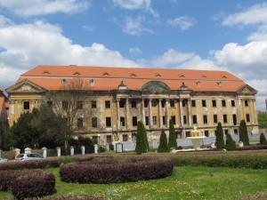 Pałac Promnitzów w Żarach