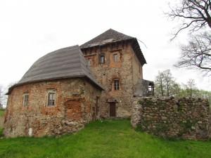 Zamek w Witkowie