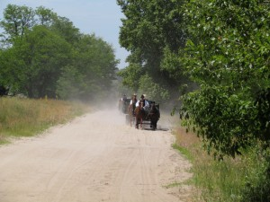 Bugac Puszta - wycieczka po węgierskim stepie