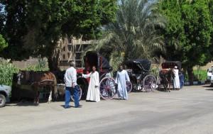 Przejażdżka dorożkami po Luxorze w Egipcie