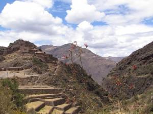 Ruiny inkaskiego miasta Pisaq