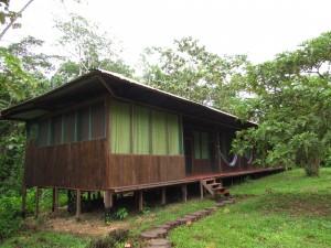 Nasz hotel w dżungli, czyli Amazon Lodge Tambopata