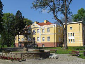 Zamek w Kaliszu Pomorskim