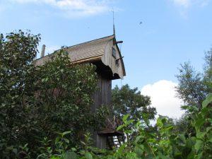 Wiatrak koźlak w Drewnicy