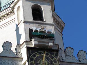 Koziołki na poznańskim Ratuszu