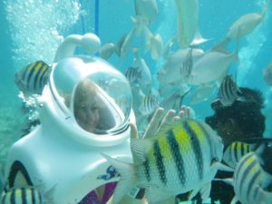 Sea Trek w Xcaret - podwodny spacer