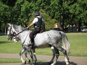 Konna Policja w londyńskim St James's Park