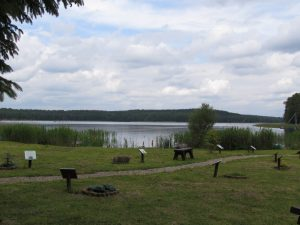 Półwysep Orła białego nad Jeziorem Pile w Bornem Sulinowie