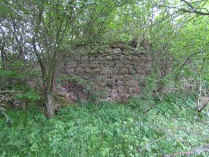 Ruiny zamku w Krzywnicy