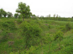 Pozostałości zamku w Szadzku
