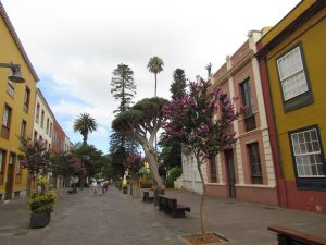 Ulica San Agustin w La Lagunie na Teneryfie