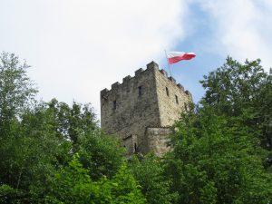 Zamek w Wytrzyszczce