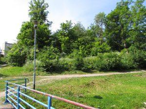 Pozostałości zamku w Złocieńcu