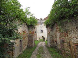 Zamek w Witostowicach