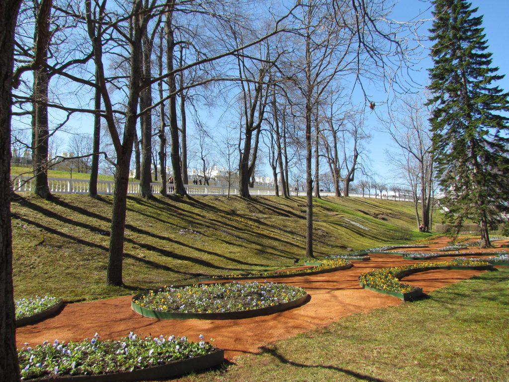 Ogrody w Peterhofie