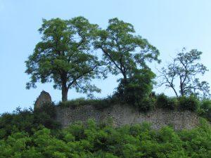 Ruiny zamku w Podgrodziu
