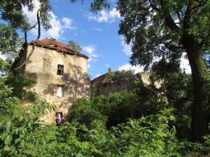 Zamek w Nieszkowicach