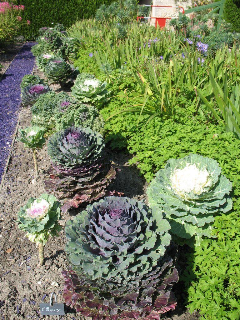 Ogród warzywny na Zamku Cheverny