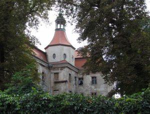 Zamek w Domanicach