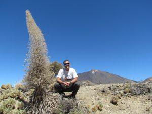 Żmijowiec na tle Pico del Teide w kalderze Las Cañadas na Teneryfie