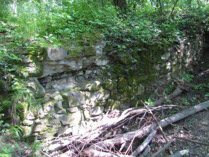 Pozostałości zamku Trzewlin w Wielkiej Wsi