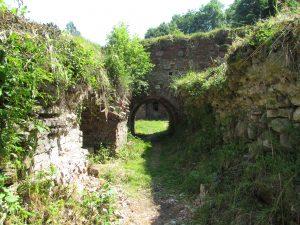 Ruiny zamku w Tarnowie