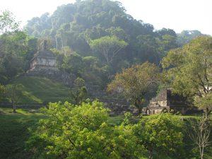 Miasto Majów - Palenque