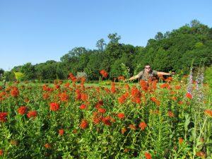 Nowy park zdrojowy w Busku Zdroju