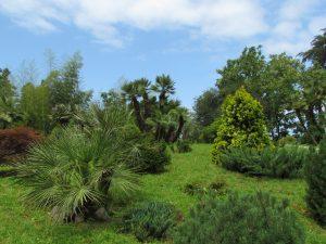 Ogród Botaniczny Makhinjauri