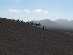 Ruta de los Camellos w Parku Narodowym Timanfaya na Lanzarote
