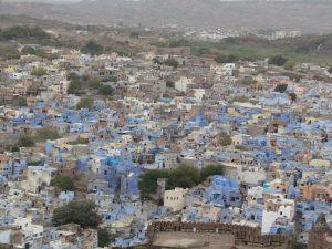 Jodhpur - błękitne miasto
