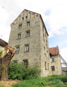 Zamek w Pastuchowie
