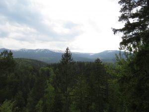Panorama na Karkonosze ze Złotego Widoku