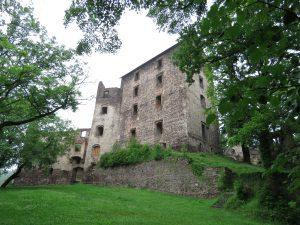 Zamek w Świnach