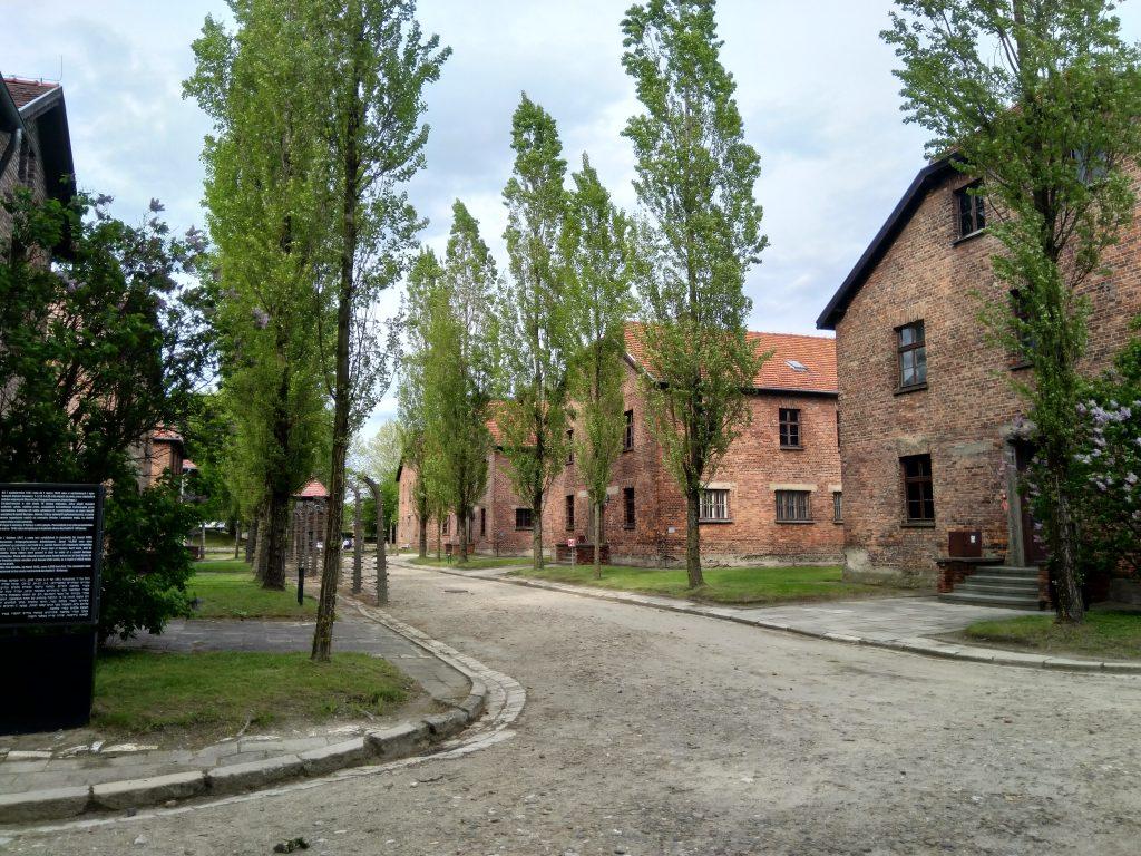 Muzeum Auschwitz w Oświęcimiu